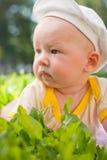 портрет травы младенца лежа Стоковые Изображения RF