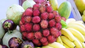 Портрет тропических плодоовощей Стоковое Изображение