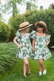 Портрет усмехаясь красивых девушек с шляпами против зеленой травы на парке лета Стоковое Изображение RF