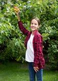 Портрет усмехаясь маленькой девочки принимая свежее яблоко от дерева в саде Стоковые Фото