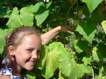 Портрет усмехаясь маленькой девочки с огурцом в саде лета стоковое фото rf