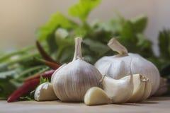 Портрет шарика чеснока в кухне Стоковое фото RF