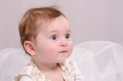 Портрет шестимесячной девушки на кресле Стоковое Фото