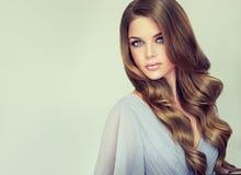 Портрет шикарной молодой женщины с элегантным составляет и совершенный стиль причёсок Стоковые Фотографии RF