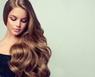 Портрет шикарной молодой женщины с элегантным составляет и совершенный стиль причёсок Стоковая Фотография RF