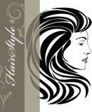 Портрет элегантной женщины. Знамя стиля причёсок бесплатная иллюстрация