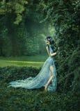 Портрет эльфа в зацветая garde Стоковая Фотография