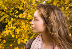 портрет девушки способа крупного плана осени Стоковое Фото