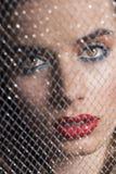 Портрет Close-up девушки за сетью Стоковая Фотография RF