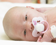портрет s младенца Стоковое фото RF