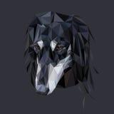 Портрет Saluki полигональный Стоковое Изображение RF