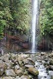 Португалия, Мадейра, водопад 25 Fontes около Rabacal стоковое изображение rf