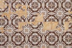 Португальская текстура azulejo Стоковые Изображения