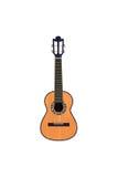Португальская гавайская гитара Стоковые Фотографии RF