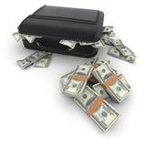 Портфель с сериями наличных денег, доллара Стоковое фото RF