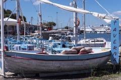 Порт и новая крепость Корфу в главном городе приветствуют вкладыши круиза Стоковые Фото