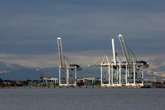 порт кранов стоковая фотография rf
