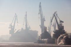 Порт на утре Стоковое фото RF