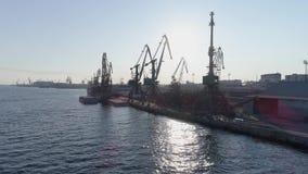Порт торговлей города вида с воздуха с годными для повторного использования материалами, кранами и грузовим кораблем сток-видео