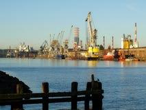 порт gdansk стоковое фото rf