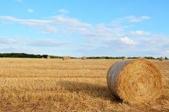 Поруки сена на сжатом поле Стоковые Изображения