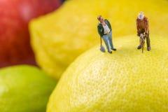 Поры лимона Стоковые Фото