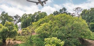 Посадка самолета над холмами Сан-Диего, CA Стоковые Фотографии RF