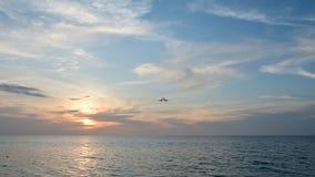 посадка самолета частного самолета 4K причаливая с видом на океан видеоматериал
