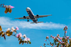 Посадка аэробуса самолета двигателя Стоковое фото RF
