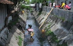 Посвященно резиденты очищают вверх реку в городе запева в центральной Ява Индонезии стоковое фото