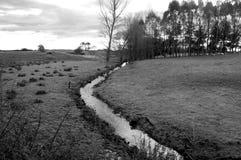посеребрите поток Стоковое Изображение