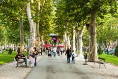 Посетители во время пятнадцатого Cest d'Best фестиваль, Загреб, Хорватия Стоковые Фотографии RF