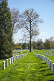 Посещающ кладбище Арлингтона в Вашингтоне - ВАШИНГТОНЕ, ОКРУГЕ КОЛУМБИЯ - 8-ое апреля 2017 стоковые фотографии rf