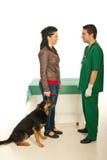 посещение ветеринара предпринимателя собаки доктора Стоковые Изображения RF