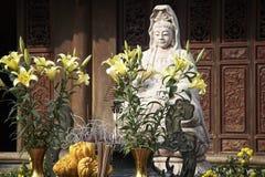 Посещение и путешествие Fabolous к Вьетнаму стоковые изображения rf