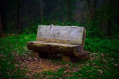 Посещение к парку Стоковое фото RF