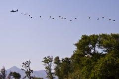 Поскачите из самолета Стоковое Изображение RF