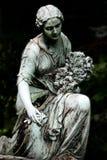 последние розы Стоковые Изображения RF