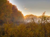 Последний восход солнца в октябре стоковые фото