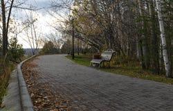 Последняя осень в парке на пасмурный день стоковое изображение rf