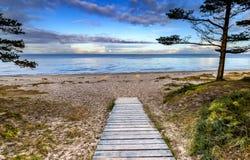 Последняя осень на пляже лесохозяйства Jurmala Стоковые Изображения