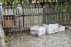 Последствия flooding, затопленная разрушенная пчела hives Стоковая Фотография RF