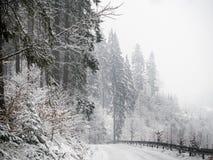 После снежностей зимы стоковые фото