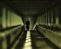 последуйте за линией Стоковое Фото