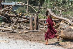 Послушник понедельника бежать на виске тонны Roi Sao Wat Стоковая Фотография