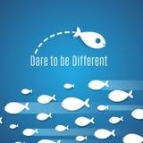 Посмейте быть различной концепцией вектора решения успеха с малой группой рыб бесплатная иллюстрация