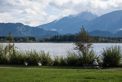 Посмотрите озеро Стоковое фото RF