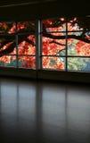 посмотрите окно Стоковые Фотографии RF