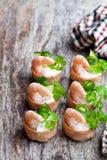 Посоленное печенье croustades кудрявое заполненное с плавленым сыром и p Стоковое Изображение