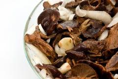 посоленные грибы тарелки стеклянные Стоковые Изображения RF
